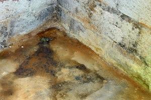 Bevorzugt Keller-Trockenlegung • Feuchte Räume wieder trocken nutzen IQ94