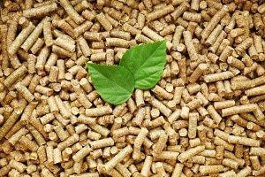 Tipp zum Bau stellt die Pelletheizung für Ihren Altbau vor.
