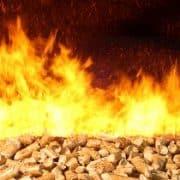 Biomasse, anheizen, Brennstoff, schüren