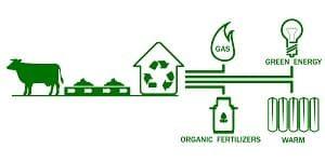 Biomasse, Anlage, Öko, Umwandlung