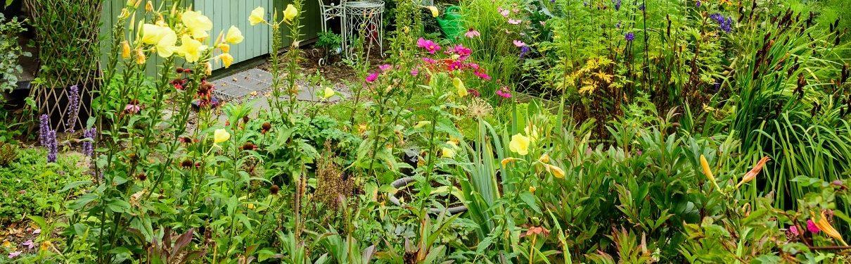 Tipp zum Bau führt Sie durch die Klassiker der Gartenbewässerung.