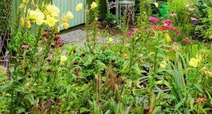 Tipp zum Bau zeigt Ihnen, was bei der Bepflanzung Ihrer Dachterrasse zu beachten ist.