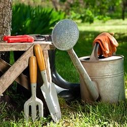Bei Tipp-zum-Bau erfahren Sie, welches Gartenwerkzeug zum Beschneiden der Pflanzen hilfreich ist.