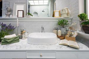 Welche Pflanzen passen am besten ins Bad? Tipp zum Bau informiert Sie.