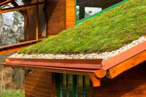 Tipp zum Bau zeigt Ihnen Inspirationen für begrünte Dächer.
