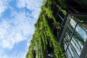 Spezieller Insektenschutz für Fenster eignet sich auch für den gewerblichen Bereich. Erfahren Sie mehr dazu auf Tipp zum Bau.