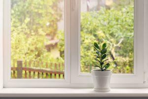 Ihre bepflanzte Fensterbank bei Tipp zum Bau