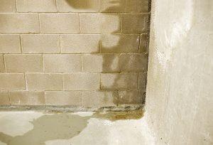 Tipp zum Bau zeigt Ihnen, wie Sie Ihre Innenwände mit einer Dampfsperre vor Feuchtigkeit schützen.
