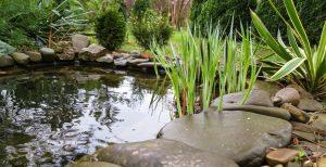 Wählen Sie zwischen Gartenpool und Badeteich für Ihr privates Badevergnügen.