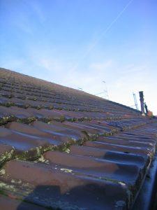 Tipp zum Bau informiert Sie zur Pflege und Reinigung Ihres Mansarddachs.