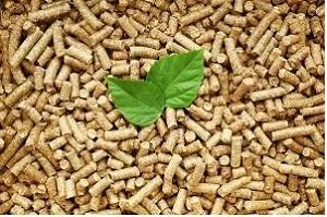 Zu den erneuerbaren Energieträgern der Biomasse zählen Holzpellets – Tipp zum Bau informiert Sie über diese und weitere Energiequellen Ihrer Heizung.