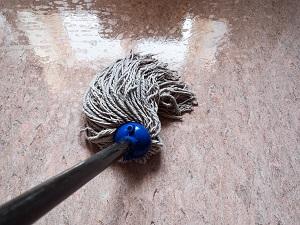 Tipp zum Bau rät Ihnen: Entfernen Sie stehendes Wasser auf Ihrem Holzfußboden schnellstmöglich.