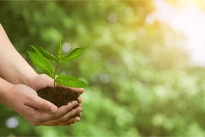 Tipp zum Bau zeigt Ihnen, wie umweltfreundlich Bodenbeschichtungen sind.