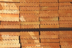 Zimmerer achten die Ressourcen des Waldes. Erfahren Sie mehr dazu bei Tipp-zum-Bau.